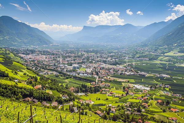 View to Merano South Tirol Stock photo © w20er