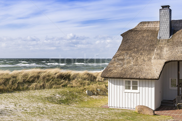 Coast Baltic Sea with dune grass and house Stock photo © w20er