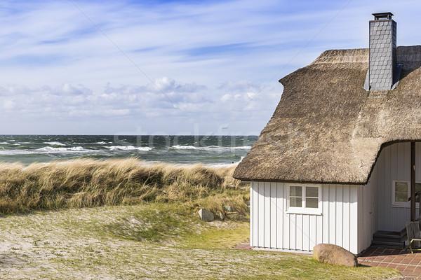 Part Balti-tenger dűne fű ház kép Stock fotó © w20er