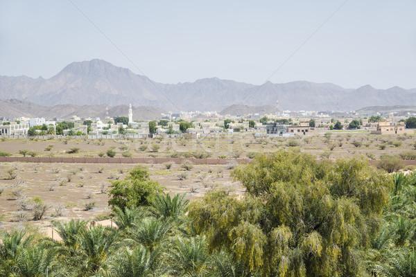 Landschap afbeelding fort Oman midden oosten muur Stockfoto © w20er
