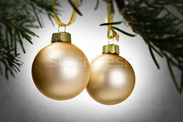 Yeşil şube Noel dekorasyon görüntü çerçeve Stok fotoğraf © w20er