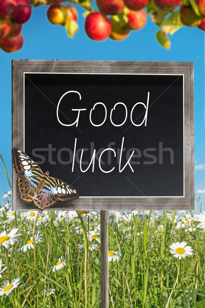 Chalkboard with text Good luck Stock photo © w20er