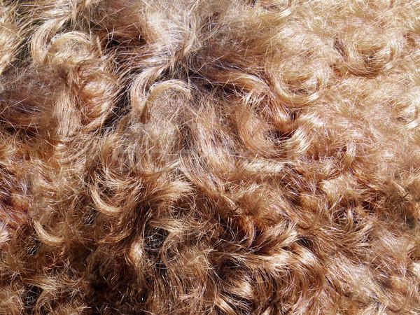 Detail hair Stock photo © w20er