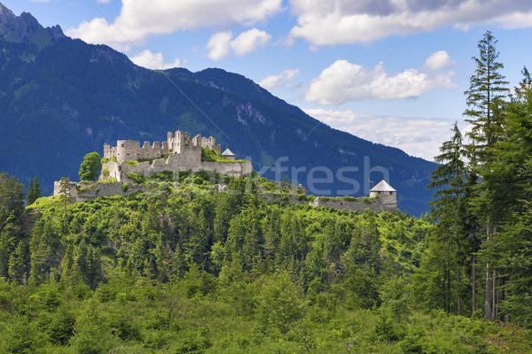Kastély kilátás Ausztria fa erdő tájkép Stock fotó © w20er