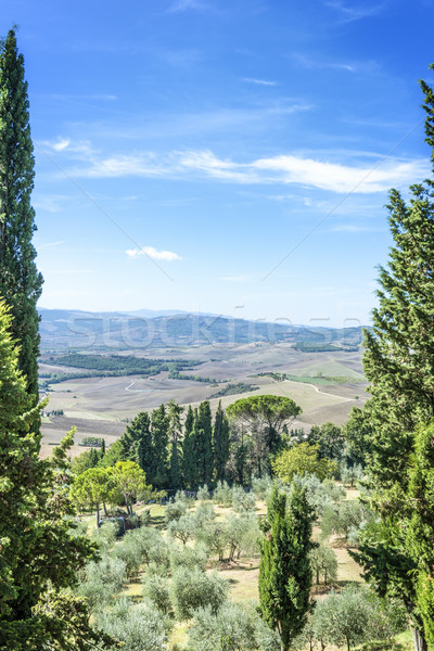 View from Pienza Stock photo © w20er