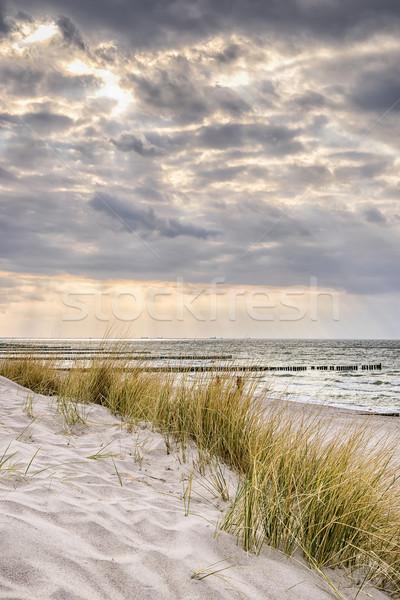 Sahil baltık denizi karanlık bulutlar resim fırtınalı Stok fotoğraf © w20er