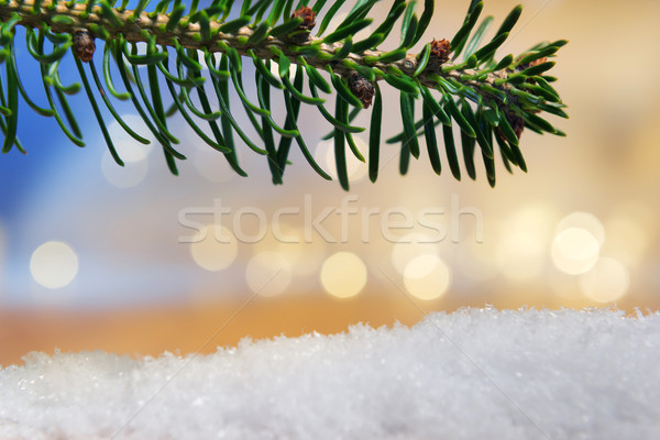 branch and artificial snow with bokeh lights Stock photo © w20er