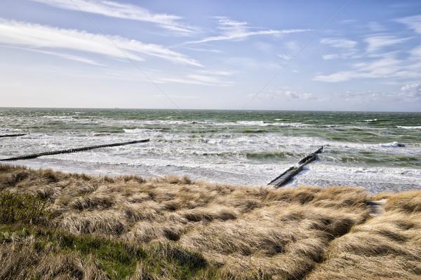 Stok fotoğraf: Sahil · baltık · denizi · kumul · çim · gökyüzü · fırtınalı
