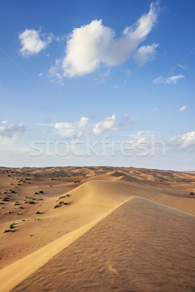 Desert Wahiba Oman Stock photo © w20er