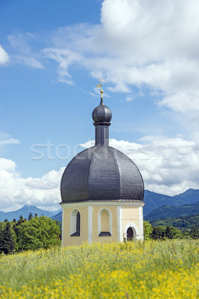 Peregrinação igreja vertical imagem grama floresta Foto stock © w20er