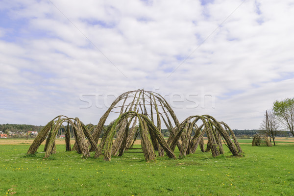 Willow architecture Stock photo © w20er