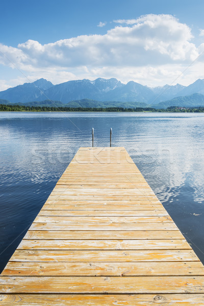 Jetty with lake and alps Stock photo © w20er