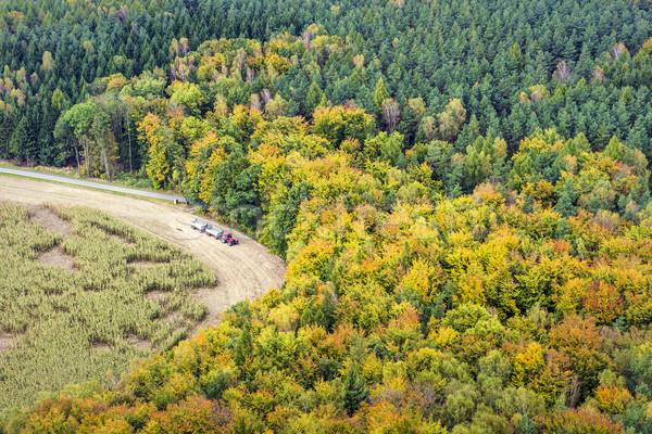 Bos trekker Zwitserland Rood veld gekleurd Stockfoto © w20er