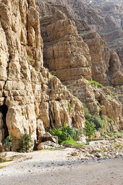 Umman görüntü kayalar avuç içi doğa çöl Stok fotoğraf © w20er