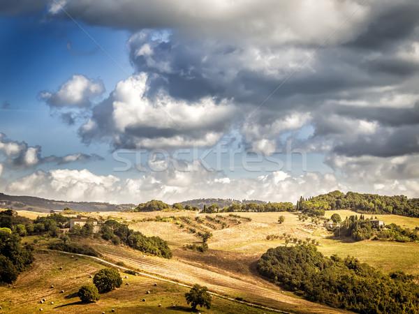 Toszkána kép tájkép Olaszország háttér nyár Stock fotó © w20er