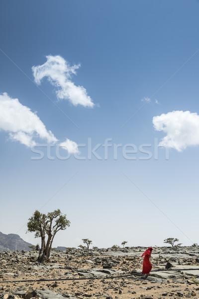 Jebel Shams bedouin woman Stock photo © w20er