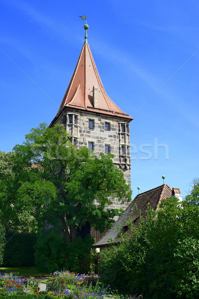 Tower of Nuremberg Castle with tree and flowers Stock photo © w20er