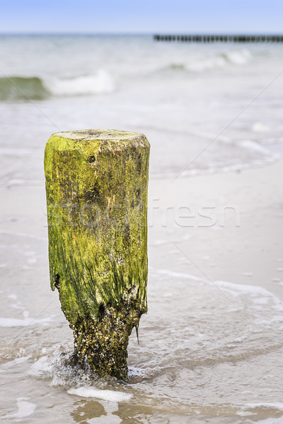 Stock photo: Breakwater pole Baltic Sea