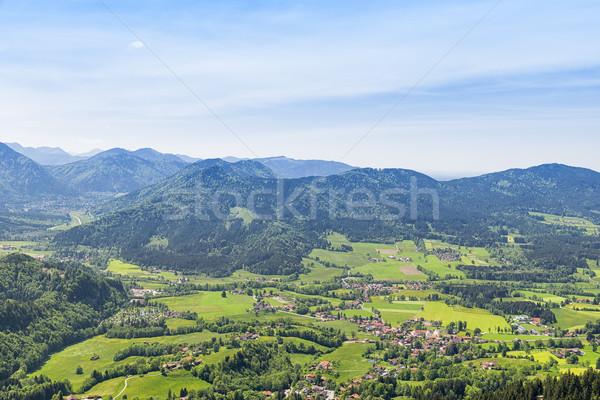 アルプス山脈 風景 山 ツリー 夏 緑 ストックフォト © w20er