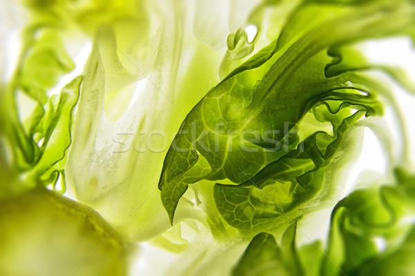 Sałatka biały żywności Zdjęcia stock © w20er