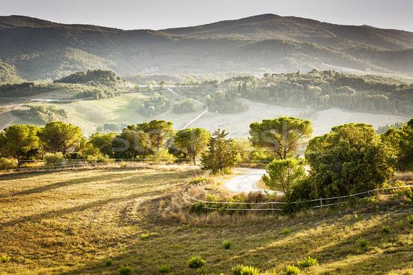 Landscape Volterra Stock photo © w20er