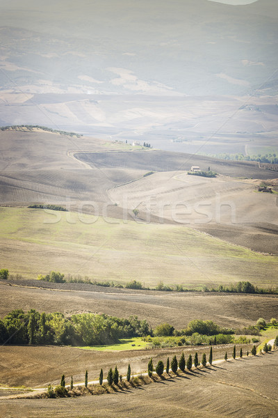 Landscape Pienza Stock photo © w20er