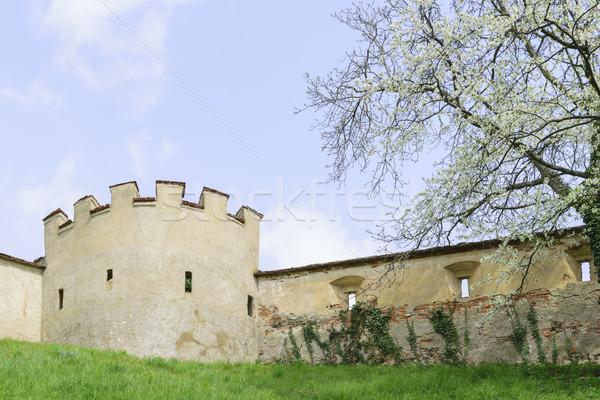 Castle wall Riegersburg Austria Stock photo © w20er