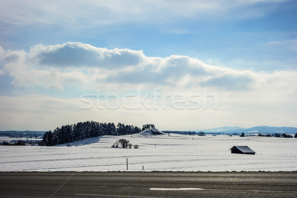 Road in winter landscape Bavaria Germany Stock photo © w20er