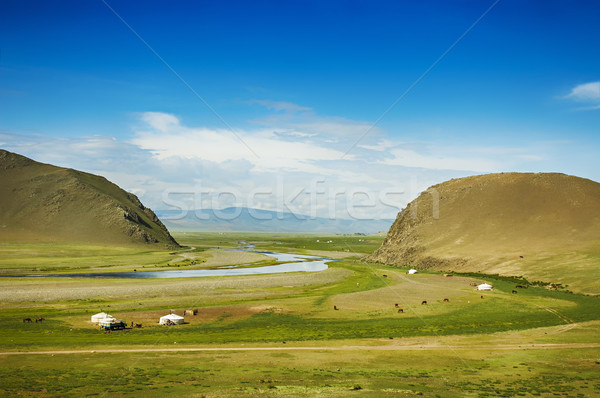 Mongolian steppe Stock photo © w20er