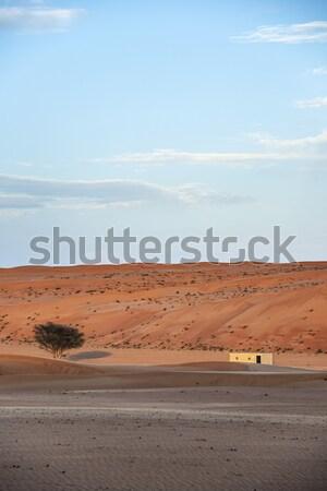 Building Desert Wahiba Oman Stock photo © w20er