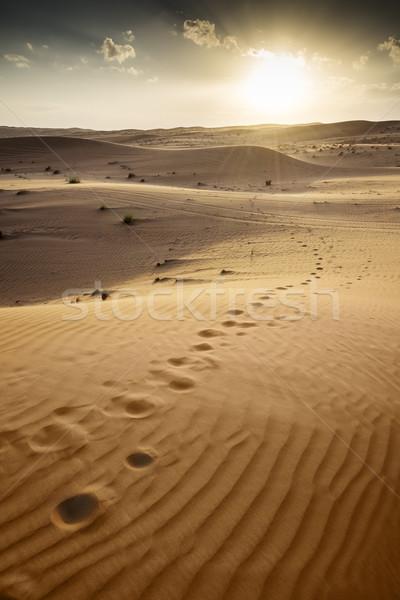 Gün batımı çöl Umman güneş manzara kum Stok fotoğraf © w20er