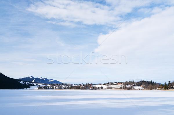 Сток-фото: озеро · изображение · заморожены · Германия · зима · древесины