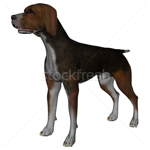 ハウンド 3D レンダリング 犬 白 孤立した ストックフォト © Wampa