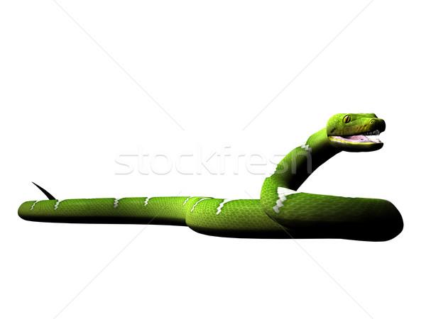 Groene python gerenderd witte Stockfoto © Wampa