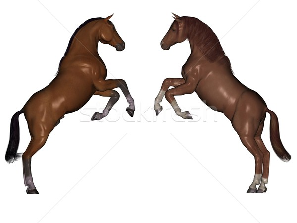 Cavalos 3D prestados isolado branco preto Foto stock © Wampa