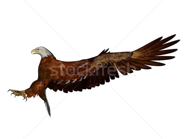 Águia 3D prestados branco isolado pássaro Foto stock © Wampa