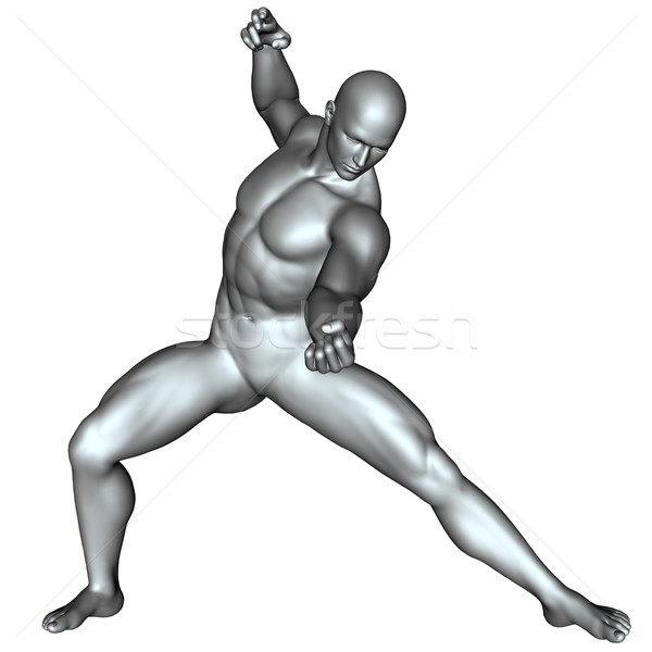Fighter on martial arts poses Stock photo © Wampa