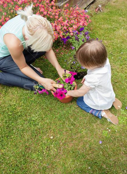 Famille usine fleurs jardin à l'extérieur soleil Photo stock © wavebreak_media