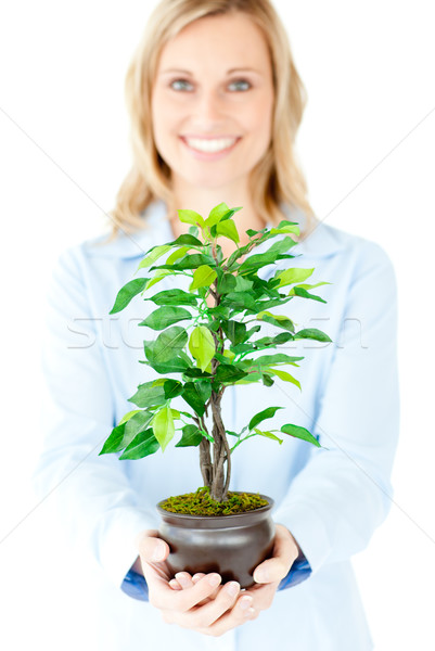Portrait of a self-assured businesswoman holding a plant Stock photo © wavebreak_media