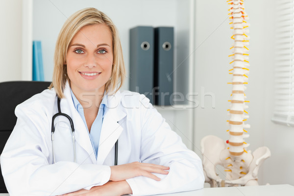 Smiling doctor with model spine next to her in her office Stock photo © wavebreak_media