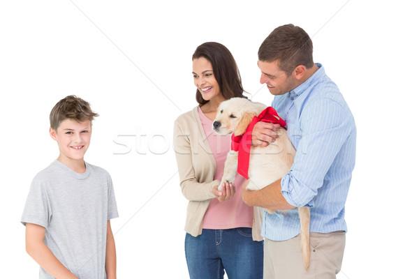 Parents gifting puppy to boy against white background Stock photo © wavebreak_media