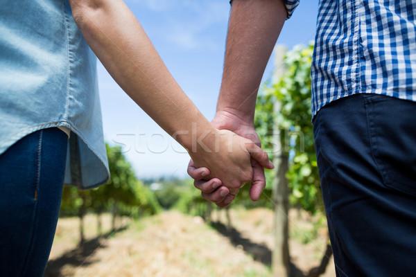Casal de mãos dadas vinha blue sky sorrir Foto stock © wavebreak_media
