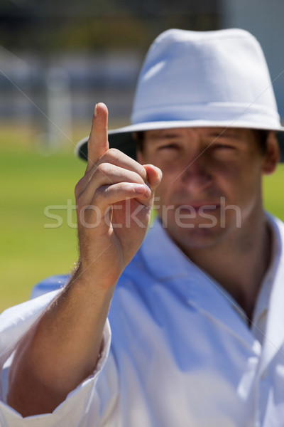 Umpire signalling out during match Stock photo © wavebreak_media