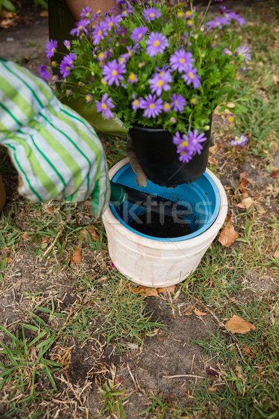 Cropped hands of man planting in pot Stock photo © wavebreak_media