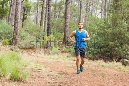 Jeunes heureux jogger marche nature femme Photo stock © wavebreak_media