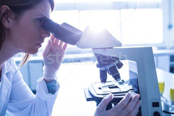 Cientista trabalhando microscópio laboratório universidade mulher Foto stock © wavebreak_media