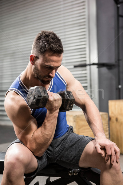 Muscular man sitting on bench lifting dumbbell Stock photo © wavebreak_media