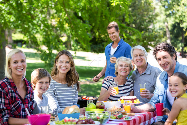 Family and friends having a picnic with barbecue Stock photo © wavebreak_media