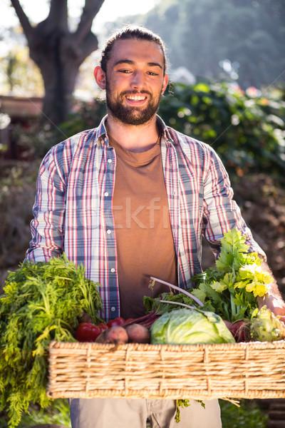 Feliz jardineiro legumes frescos jardim Foto stock © wavebreak_media