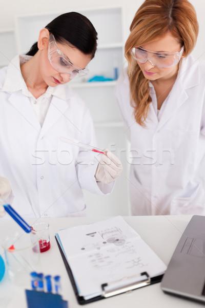 Twee wetenschappers experiment lab vrouw gezondheid Stockfoto © wavebreak_media
